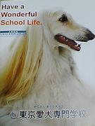東京愛犬専門学校2007年度入学生