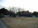 千葉大学緑地植物学研究室