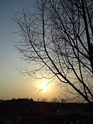 〜陽の力〜