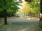済美公園!