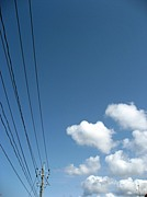 島根県立大学写真部