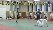 相模大野格闘技サークル