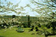 長崎県立琴海高等学校