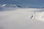 Kenai Peninsula& KodiakIsland