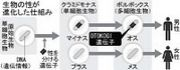 侠気−OTOKOGI−