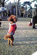 つくば市赤塚公園で音楽ぅ
