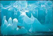 氷河とか氷山とか好き