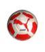 和光国際高校 女子サッカー部