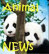 ★Animal NEWS★
