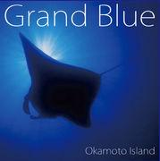 Okamoto Island&岡本博文コミュ