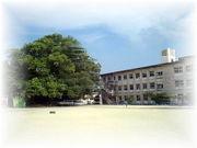 宮崎国富小学校