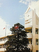 鹿嶋市立大同西小学校