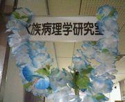 三陸生体防御学会