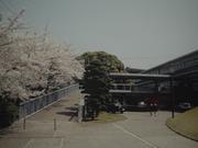大阪府立阪南高校