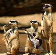 swing&jazz club 2011