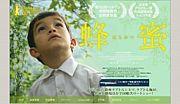 蜂蜜(movie)