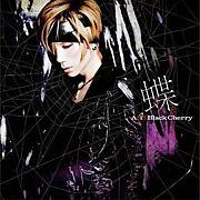 蝶/Acid Black Cherry