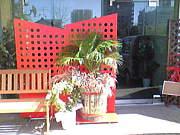 BONITA[Cafe&Bar] 小牧