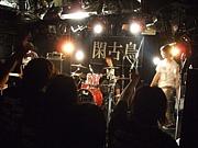 【横浜】閑古鳥【バンド】