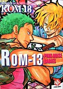 ROM-13/ナリ
