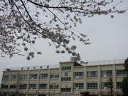 中野区立新山小学校