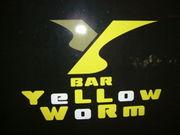 yellow worm