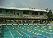 鈴蘭台高校水泳部