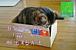 自分の小さな箱から脱出する方法
