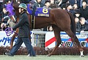 ユートピア(競走馬)