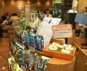 ドトールコーヒー 新松戸店