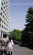 ★純真短期大学★
