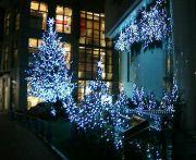 1985年生まれin渋谷横浜六本木