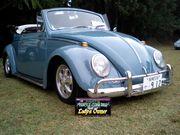..。o○☆jewel beetle*:..。*