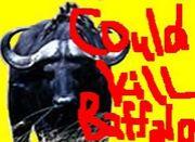 Could Kill Buffalo