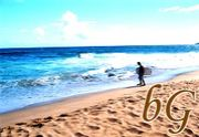 beach-G (gay mix)