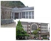 立命館大学国際関係学部