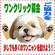 ★犬猫を救うワンクリック募金