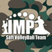 IMPソフトバレーチーム