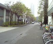 旧東京水産大学 資源管理学科