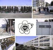 昭島市立清泉中学校