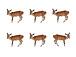six deer -survival dAnce-