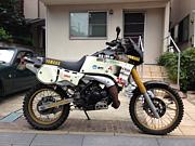 TDR250 My Love