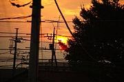 電線のある風景【電線百景】