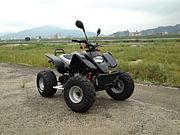 広島 ATV バギー ミニカー