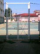 水商テニス部