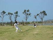 沖縄草野球連合