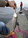 「川崎新堤」で釣りを楽しもう♪