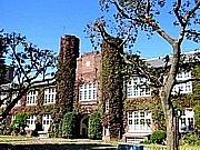 2011年度立教大学社会学部新入生