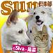SUN&Siva+陽菜 倶楽部