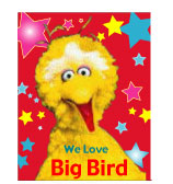 ‡BigBird‡